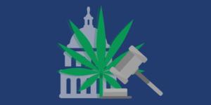 Légalisation du cannabis, au-delà des idées reçues (article)
