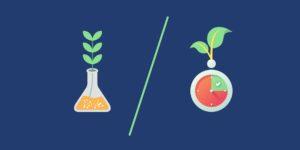 La soutenabilité de la croissance (Fiche concept)