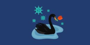 La Crise financière de la Covid-19, The Black Swan et les tulipes néerlandaises (La chronique de l'éco)